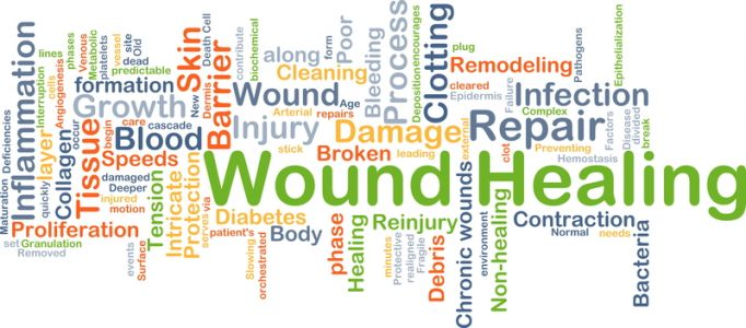 Diary of a Wound Healing